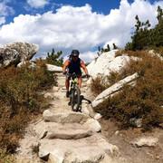 Mountain Biking near Reno