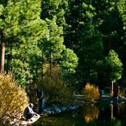 Galena Creek Reno