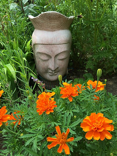 Buddha in the Garden at Beth Fairservis