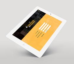 iPad2 copy