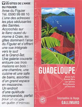 referencement-gite-anse-figuier-gallimar