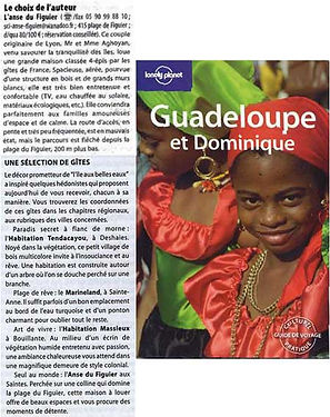 referencement-gite-anse-figuier-lonely-p