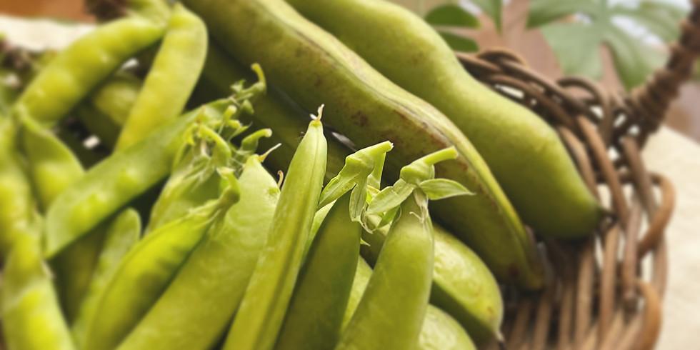 ぜんぶいただきます〜豆をいろいろとちょっと山菜〜