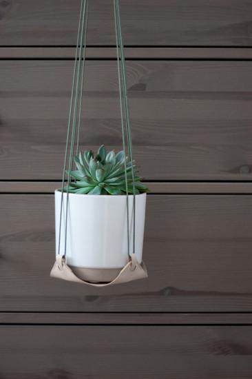 plant. plant hanger 01
