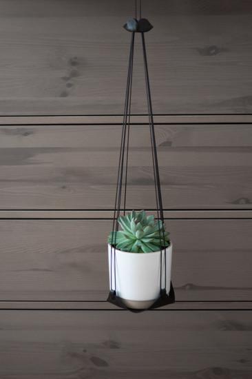 plant. plant hanger 04