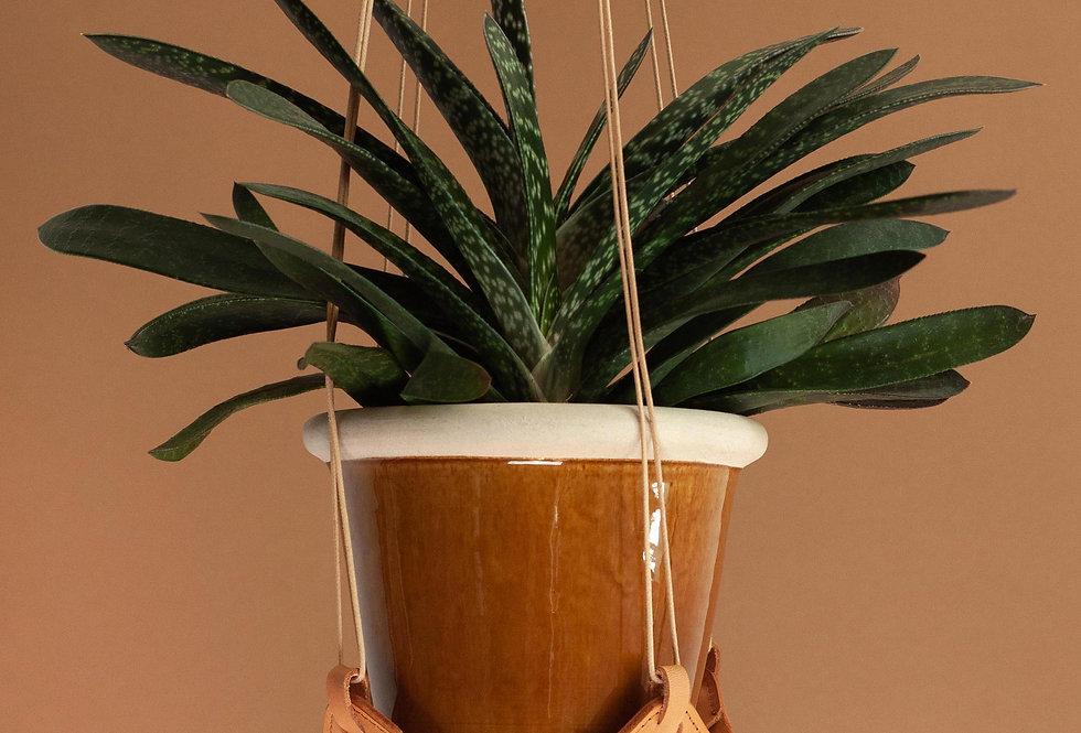 Blumenampel/Pflanzenhänger // beige