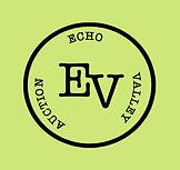 Echo auction green.jpg