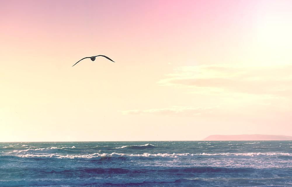 Freedom. Peace. Serenity. (Photo by Matthew Fournier)