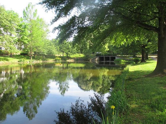 Serene local waterway.jpg