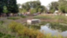 Kemptown bioretention.jpg