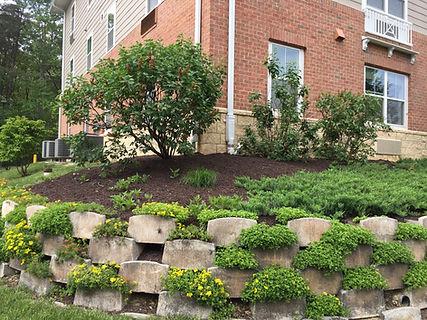 Annapolis retaining wall.JPG