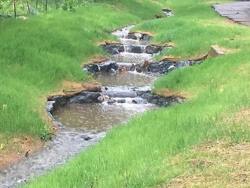 Amethyst Stream Restoration (1).JPG