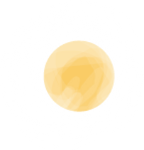 Disque jaune.png