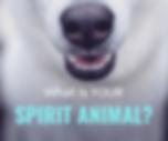 spirit animal icon.png