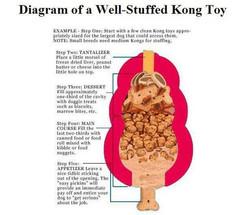 Kong diagram