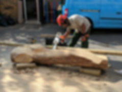 Preparing a tree trunk to become a balance beam