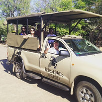 Kruger Park Day Tours