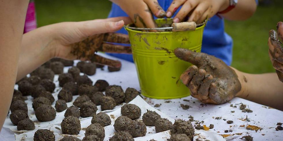 Atelier familial - Bombes de graines