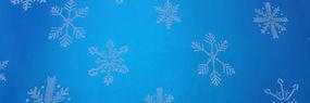 niebieska_śnieżynka_-_27IC0B.jpg