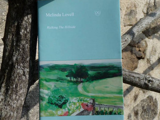 Editor Melinda Lovell's first full length poetry collection