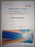 диба данфос 2013.jpg