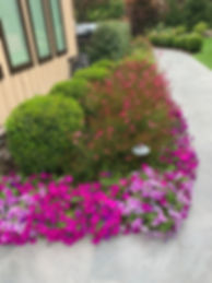 commercial landscaper, lawn care, lawns, hedge trimming, flowers, gardener
