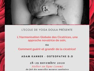 Harmonisation globale des cicatrices par l'École de yoga Doula
