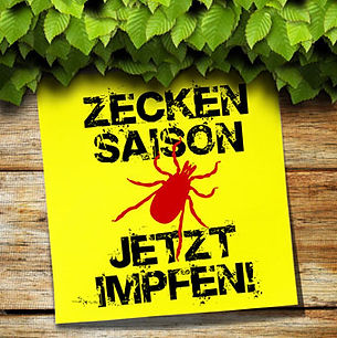 Zecken-1.jpg