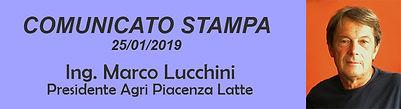 comunicato stampa lucchini 26-01-2019 pa
