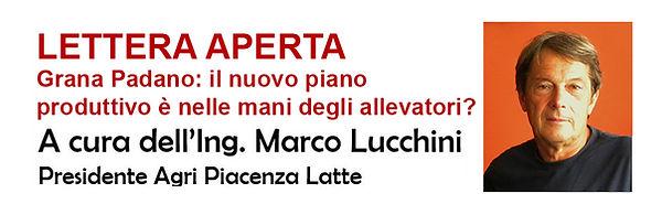 Lettera aperta Lucchini banner.jpg