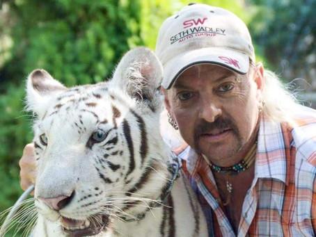 Joe Exotic: Tiger King turned Meme