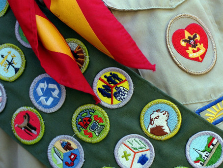 The rise and fall of the Boy Scouts of America