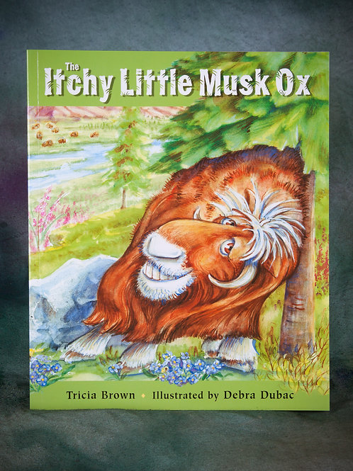 Itchy Little Musk Ox
