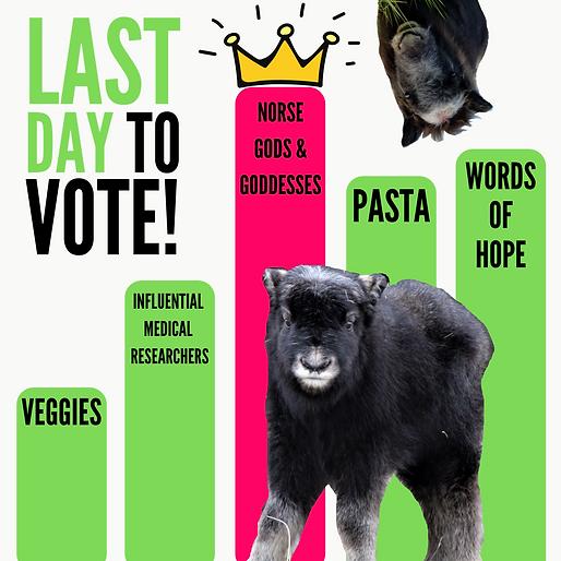 #votethetheme GRAPH (4).png
