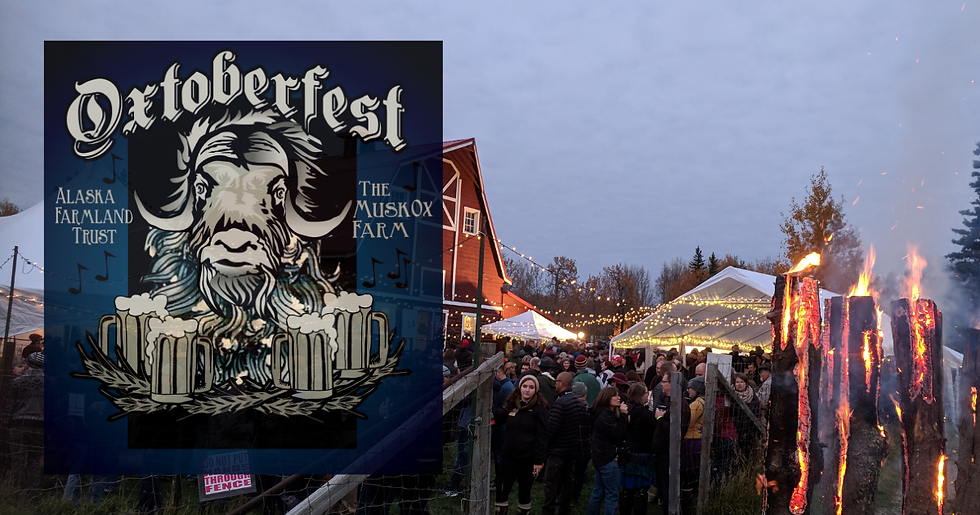 oxfest21-web (1).png