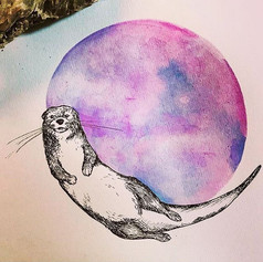 Full Moons and Spirit Animals.__Taking o