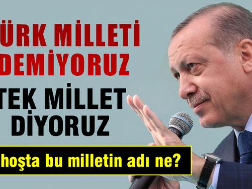 TAYYİP TÜRK MİLLETİNDEN BÜYÜK DEĞİLDİR !!!