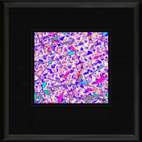 WOJ 73 Framed
