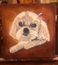 Pet portrait- Simone -SOLD