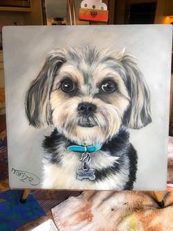 Dog portrait - SOLD