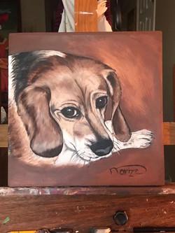 pet portrait- Megan - SOLD