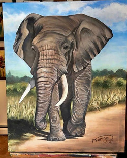 African elephant - SOLD