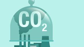 Carbon Capture: What is it?