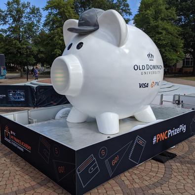 Visa Pig_1 (1).jpg