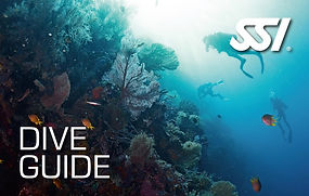 Aquatis Diving Lanzarote - SSI Dive Guide