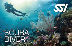 Aquatis Buceo Lanzarote - Cursos SSI