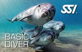 Aquatis Diving Lanzarote - Plongee