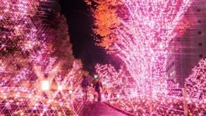 冬を楽しむなら!横浜のメンズエステでバイトはいかがですか?