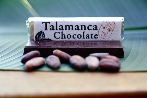 organic tree to bar chocolate, single origin Costa Rica