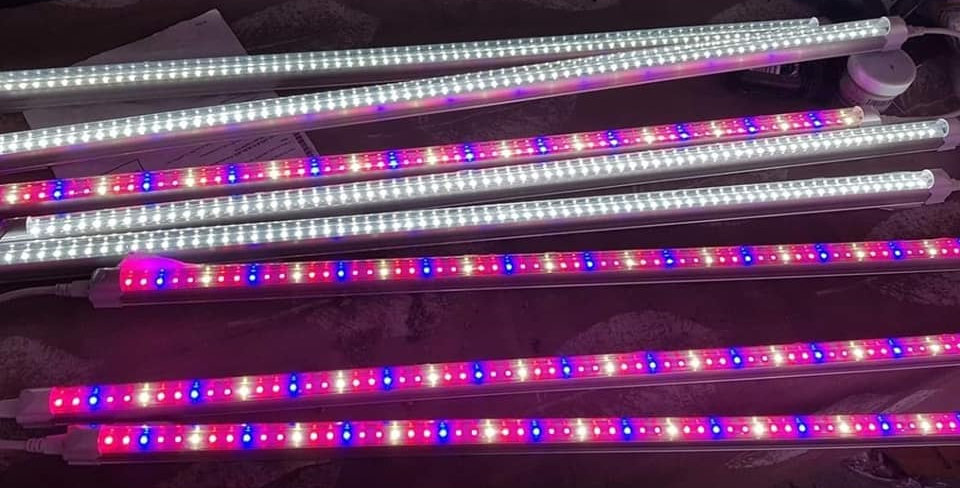 White / Mix Red-Blue-White Grow Lights (2ft)
